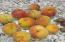 11668 SE Ash St, South Beach, OR 97366 - Peaches