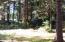 568 NE Idaho St, Yachats, OR 97498 - Back of Property (3)