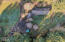 1680 NE Sturdevant Rd, Toledo, OR 97391 - 1680 Sturdevant Rd Toledo - MLS -42