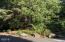 481 Salishan Hills Dr, Gleneden Beach, OR 97388 - Lower corner lot
