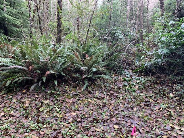 TL 1324 SE Lucy Ln, Waldport, OR 97394 - From Lucy Ln