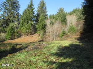 TL 00300 N North Bank Rd, Otis, OR 97368 - Private Acerage