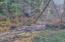 1615 N Bear Creek Rd, Otis, OR 97368 - River Frontage