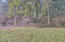 1615 N Bear Creek Rd, Otis, OR 97368 - Land