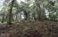 481 Salishan Hills Dr, Gleneden Beach, OR 97388 - Lot Cleared 12/19