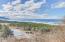 T/L 432 Tyee Ct, Neskowin, OR 97149 - Wetlands