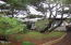 1722 NW Abbey Ct, Waldport, OR 97394 - Park Like Yard