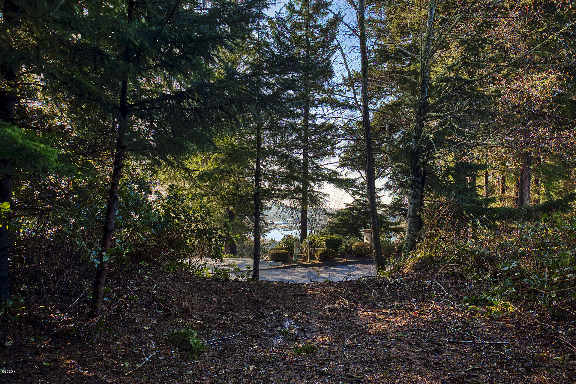 TL02402 Larch Street, Newport, OR 97365 - WaterView