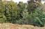 TL. 9900 SW Wedge Ct, Waldport, OR 97394 - Lot 19 view