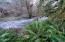 T/L 301 N Bear Creek Rd, Otis, OR 97368 - more creek