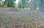 300 400BLK Vista Terrace, Otis, OR 97368 - Tax Lots 500 & 600 from Top of Lot 600