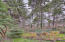 1841 NW 39th St, Lincoln City, OR 97367 - Back Yard View