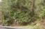 9.5 MILES EAST Alsea Hwy, Waldport, OR 97394 - DSC00243