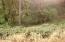 9.5 MILES EAST Alsea Hwy, Waldport, OR 97394 - DSC00252