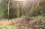 9.5 MILES EAST Alsea Hwy, Waldport, OR 97394 - DSC00254