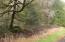 9.5 MILES EAST Alsea Hwy, Waldport, OR 97394 - DSC00259