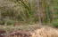9.5 MILES EAST Alsea Hwy, Waldport, OR 97394 - DSC00260