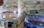 505 NE 71st St, O, Newport, OR 97365 - Garage