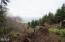 LOT 39 Blackstone Ii, Yachats, OR 97498 - Clearing for building