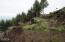 LOT 39 Blackstone Ii, Yachats, OR 97498 - Hill Side Building site