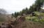 LOT 39 Blackstone Ii, Yachats, OR 97498 - More view
