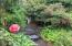 9191 NW Seal Rock St, Seal Rock, OR 97376 - In bloom