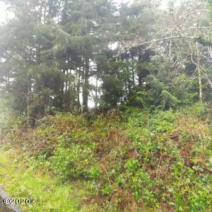 TL 300 SW Dolores Dr, Waldport, OR 97394 - Lot