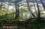 4365 Forest Grove Av, Neskowin, OR 97149 - 20