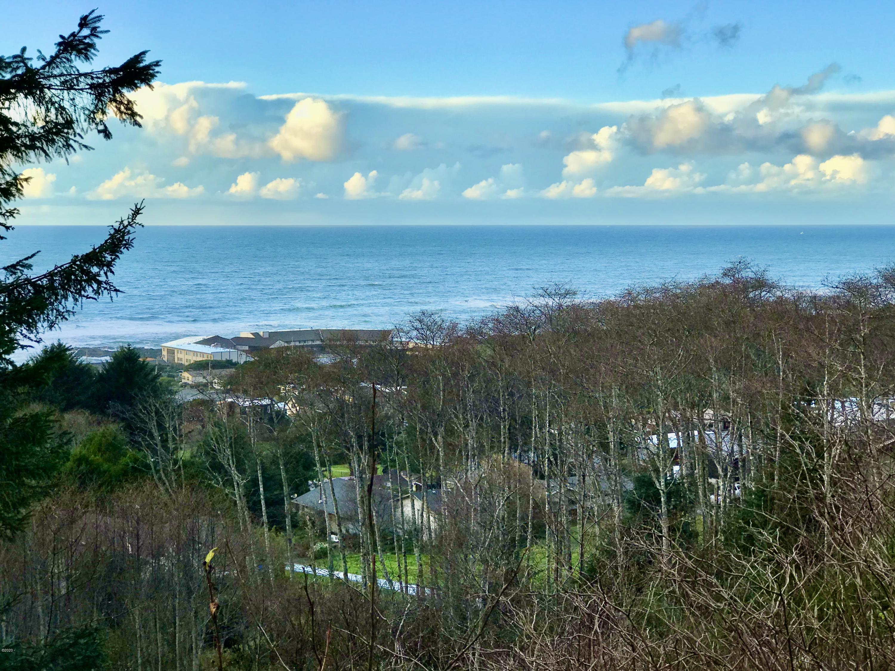 TL 2000 Hanley Dr, Yachats, OR 97498 - View from lot
