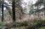 TL 706 Sandlake Rd, Cloverdale, OR 97112 - wooded privacy