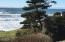 106 NW 68th St, Newport, OR 97365 - view
