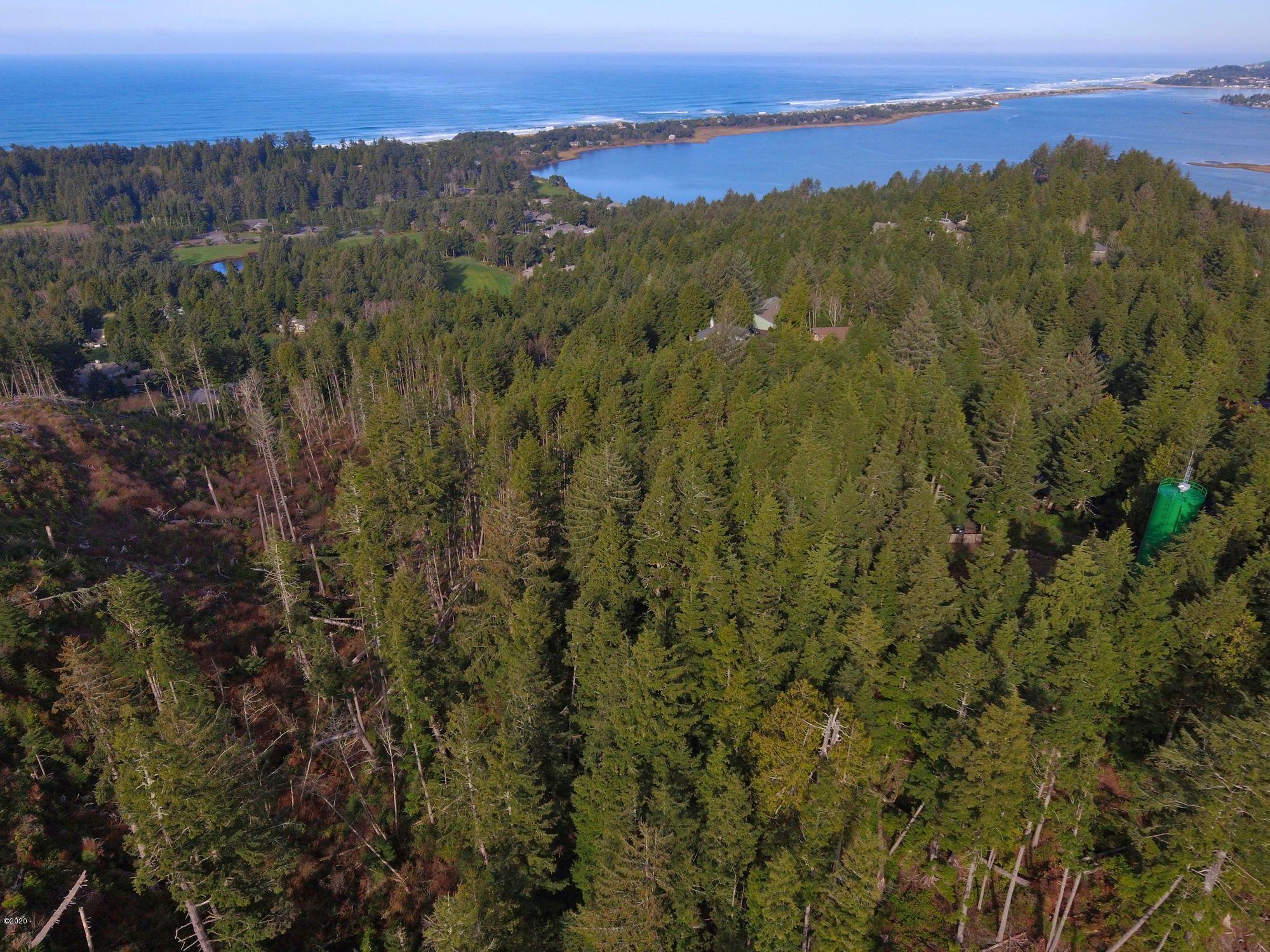 520 Ocean View Lane, Gleneden Beach, OR 97388 - Aerial View