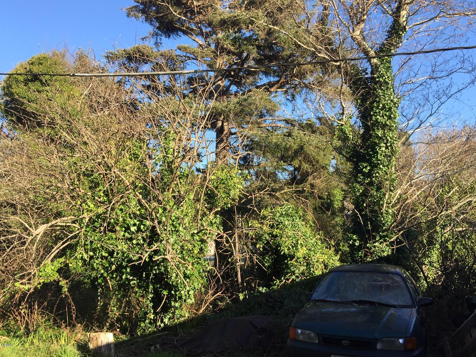 TL6700 Neptune Ave, Gleneden Beach, OR 97388 - view from street