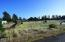 TL 301 Minor Park Rd, Waldport, OR 97394 - Lot