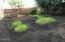 2102 NW 33rd St, Lincoln City, OR 97367 - Back Yard