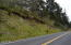 TL 1206 Brooten Road, Pacific City, OR 97135