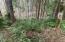 506 Beaver Pond Lane, Gleneden Beach, OR 97388 - IMG-2652