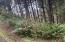 506 Beaver Pond Lane, Gleneden Beach, OR 97388 - IMG-2649