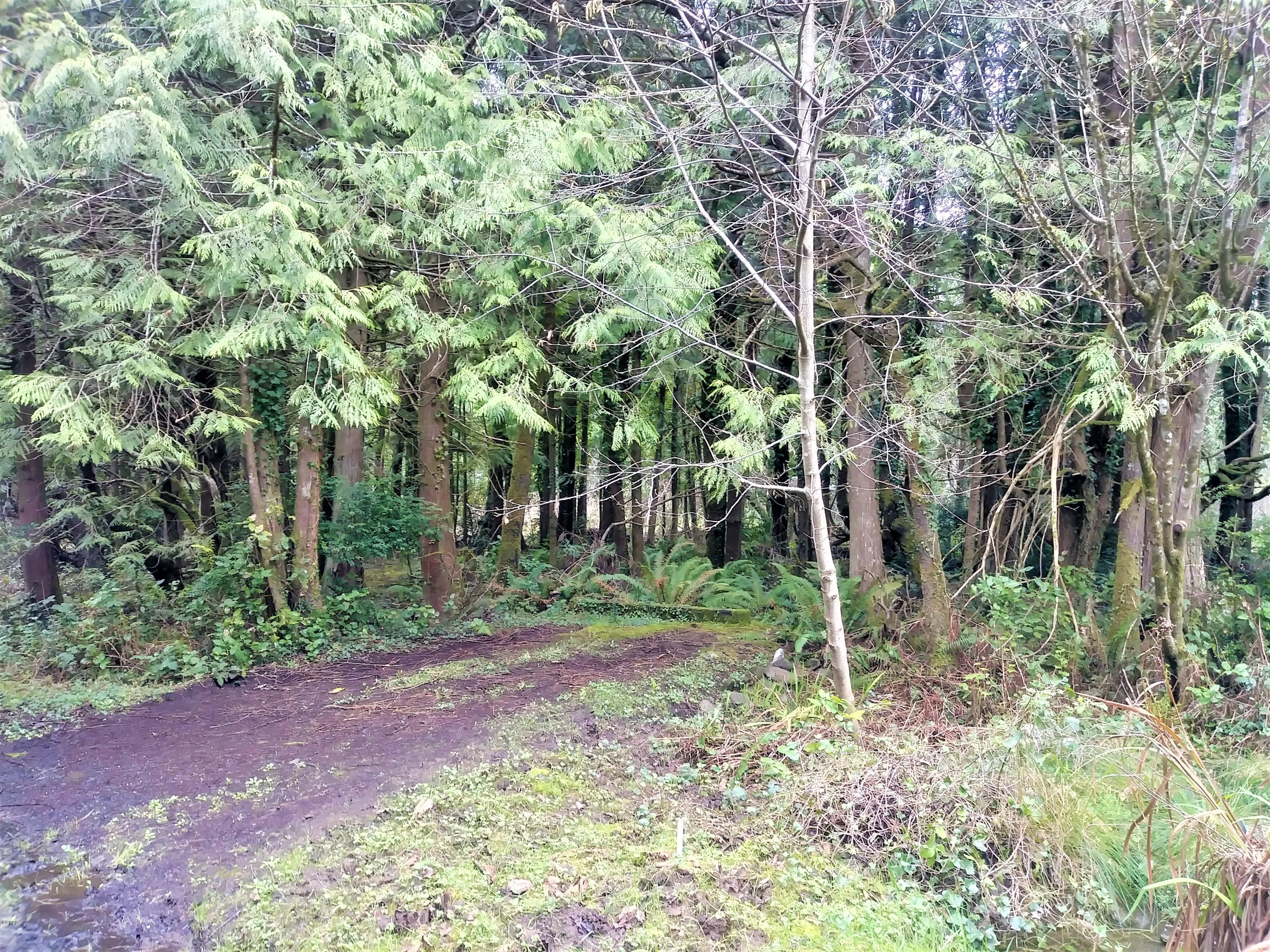 TL 117&118 Nevada, Yachats, OR 97498 - RV Parking area