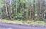 TL 117&118 Nevada, Yachats, OR 97498 - Side View Lot