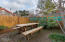 4415 Mcminnville Ave, Neskowin, OR 97149 - Outdoor space #2