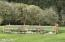 2616 S Drift Creek Rd, Lincoln City, OR 97367 - Pasture Area