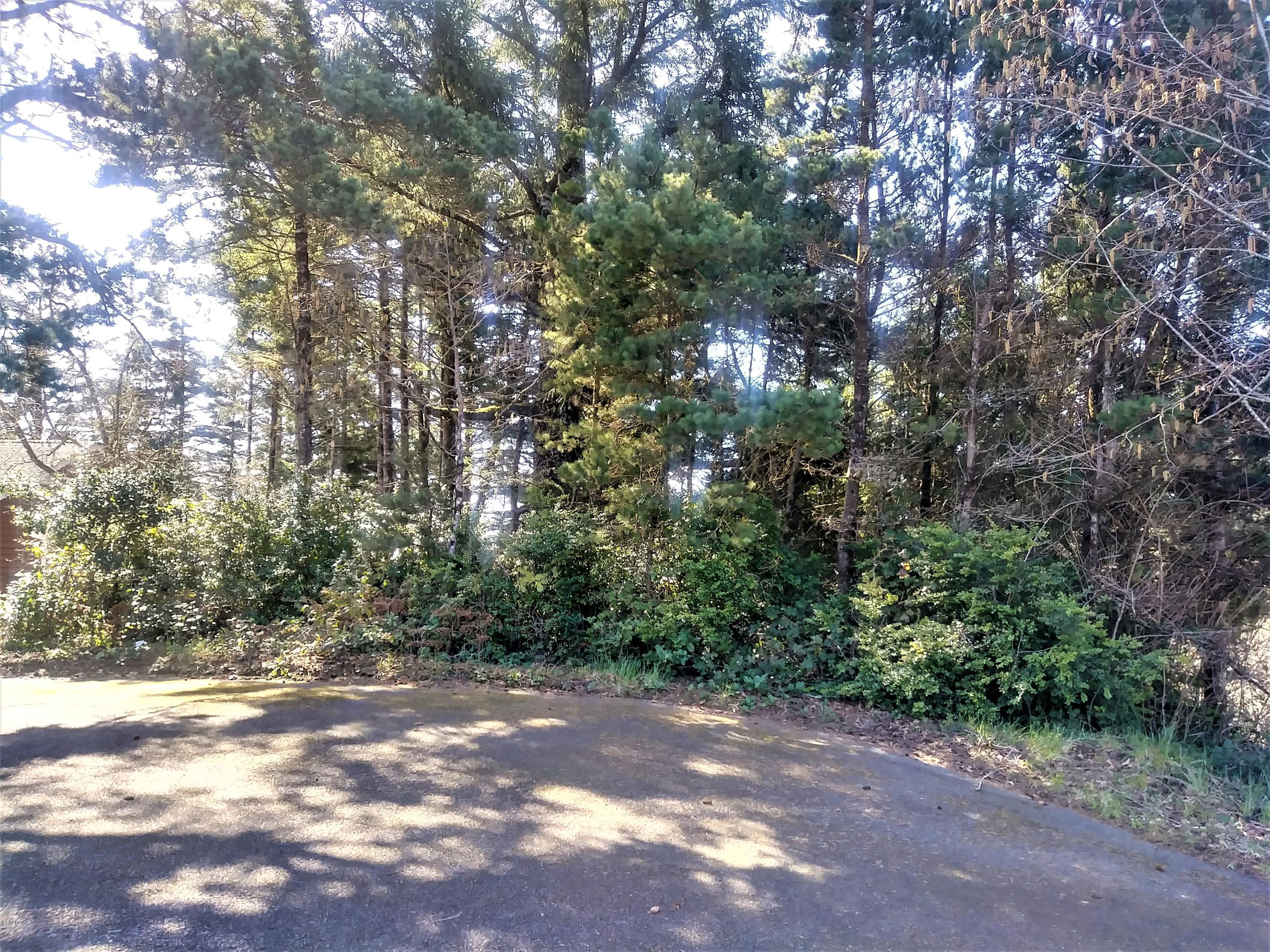 1005 NW Salal Dr, Seal Rock, OR 97376 - Drive up to lot