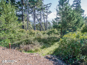 TL 6900 Pine Rd, Pacific City, OR 97135 - TL 6900 Pine Ave_01_MLS