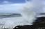 1700 NW Logan Rd, Lincoln City, OR 97367 - Exsplosive Ocean! Depoe Bay