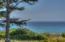1425 SW Walking Wood, Depoe Bay, OR 97341 - ocean view