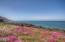 1425 SW Walking Wood, Depoe Bay, OR 97341 - Ocean front