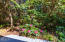 1070 SW Walking Wood, Depoe Bay, OR 97341 - Rhoddy's Back Yard  of Home
