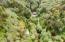 1045 Hidden Valley Rd, Toledo, OR 97391 - Aerial
