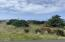 1913 NW Cruiser St, Waldport, OR 97394 - Lot-1